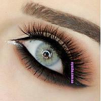 Серые линзы для темно карих глаз SKY