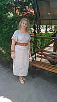 Платье , интернет магазин женской одежды , ХЛОПОК,( ПЛ 157), 50,52, одежда для полной молодежи.