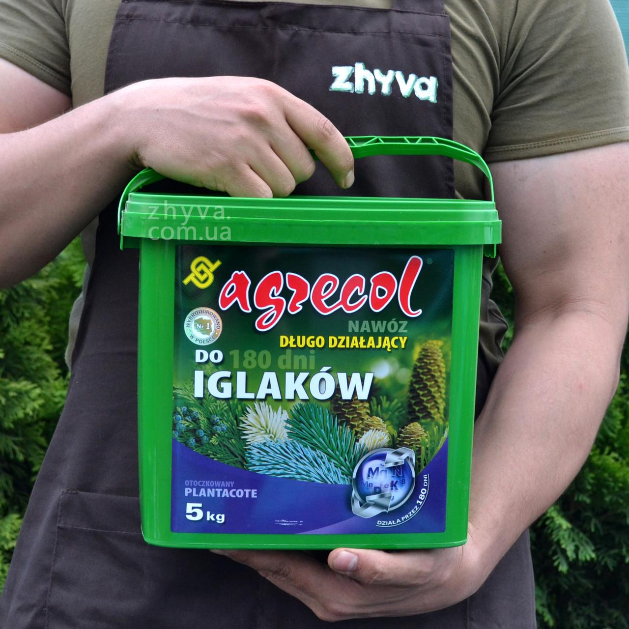 Добриво Agrecol Plantacote для хвої 5-6 міс. 5кг