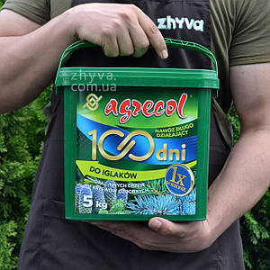Добриво Agrecol 100 днів для хвойних рослин 5кг