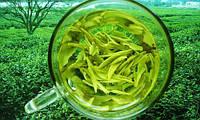 Экстракт - концентрат зеленого чая  1кг  (жидкий)