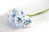 Цветы хризантемы (астры) 6 шт. 3-3,5 см диаметр бело-синего цвета, фото 1