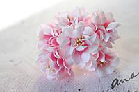 Цветы хризантемы (астры) 6 шт. 3-3,5 см диаметр бело-розового цвета, фото 1
