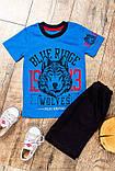 """Комплект для мальчика """"Волк"""" Модель: 6032-001-33 рост 86. 92.98.104.110.116.122.128.134. цена 110, фото 3"""