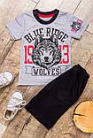 """Комплект для мальчика """"Волк"""" Модель: 6032-001-33 рост 86. 92.98.104.110.116.122.128.134. цена 110, фото 4"""