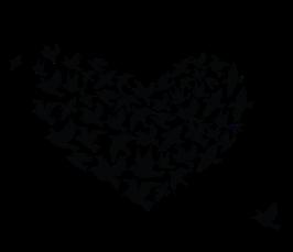 Интерьерная виниловая наклейка Heart of Birds, фото 3