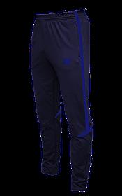 Зауженные спортивные штаны Arsenal Titar т.сине/синий