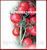 Семена томата детерминантного АСВОН F1(Kitano) 5000с