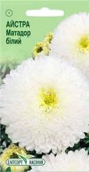 Семена Астры Матадор белый
