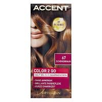 Accent Color 2 Go - Оттеночный шампунь для волос цвет 67