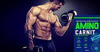 Aminocarnit - комплекс для роста мышц. Оригинал!