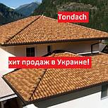 Лучшая керамическая черепица в Украине. Всего 6,86/кВ.м. Tondach., фото 10