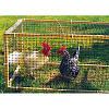 Сетка для ограждения домашней птицы Recingreen S черная 1х100м