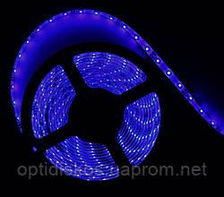 Светодиодная led лента синяя, 3528, 5м