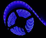 Светодиодная led лента синяя, 3528, 5м, фото 2
