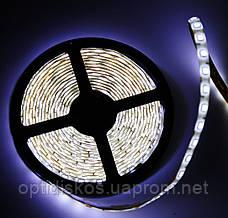 LED лента 5050 холодный белый, 5м