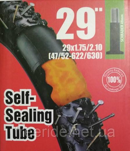 Вело Камера ChaoYang 29 х 1,95-2,1 A/V (гель) самоклеющаяся