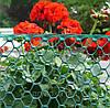 Декоративная садовая решетка BN-50 зеленая 0,5х30м