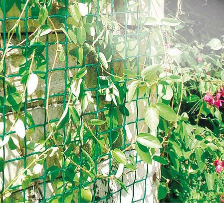 Декоративная садовая решетка K-100/45 Climbanet-43 зеленая 1х25м, фото 2