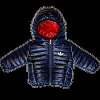 Куртка с капюшоном демисезонная Bilateral 74