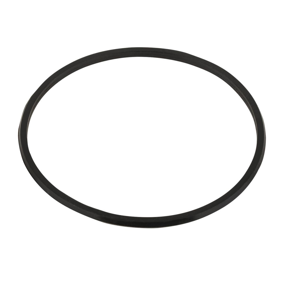 Прокладка-кольцо крышки бочки фильтра San sebastian - RBR 030.A/RFD0100.11R