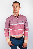 Рубашка полосатая с длинным рукавом AG-0002029 Бордо, фото 1