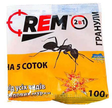 Средство от муравьев REM микрогранула 100г, фото 2