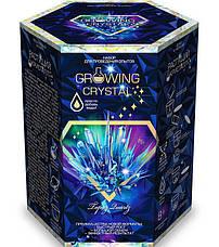 Набор для опытов GROWING CRYSTAL GRK-01 Растущие кристаллы, фото 3