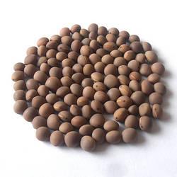 Семена вики яровой ГИБРИДНАЯ 85 элита 1 репродукция