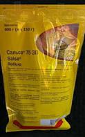 Сальса ДЕШЕВО! 105 $ за 1кг, гербицид для рапса и подсолнечника купить в киеве, цена