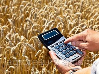 ALFA Smart Agro покупает урожай с премией до 600 грн/т