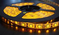 Светодиодная лента LED 5050 желтая