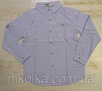 Рубашка для мальчиков оптом, Buddy Boy, 6-16 лет., арт. 5560, фото 2