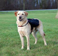 Шлейка - рюкзак для собаки L: 29 × 15 см, черный