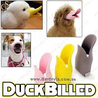 """Стильный намордник для собак - """"DuckBilled"""", фото 1"""