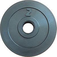 Диск обрезиненный гантельный 2 кг, сталь