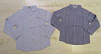 Рубашки на мальчика, Buddy Boy, 8,10,16 лет,  № 5560, фото 1