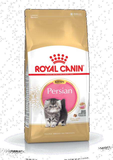 Сухой корм Royal Canin Kitten Persian для котят, 10КГ