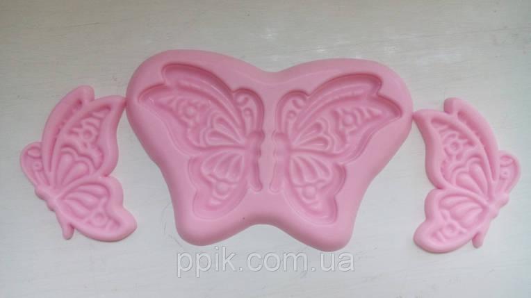Вайнер бабочка, фото 2