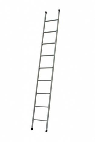 Лестница приставная 9 ступеней Технолог, фото 2