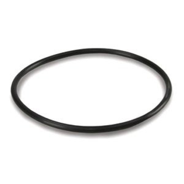 """Уплотнительное кольцо к колбам 10"""""""