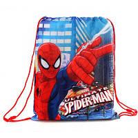 {есть:30*40,5} Сумка для мальчиков Spider-Man, 30*40,5см. [30*40,5]