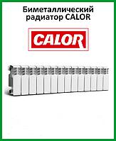 Биметаллический радиатор Calor 200х96, фото 1