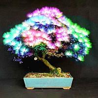 Egrow 20Pcs Дерево Acacia Семена Colorful Albizia Дерево семян Джулибриссина Крытый посадочный материал из бонсай