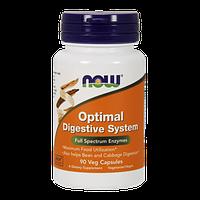 Препарат для эффективного пищеварения NOW Optimal Digestive System (90 капс)