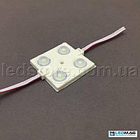 Светодиодный модуль PREMIUM 4LED SMD2835 Белый 5000-5500К IP65, фото 1