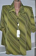 Женская блузка с коротким рукавом большой размер , фото 1
