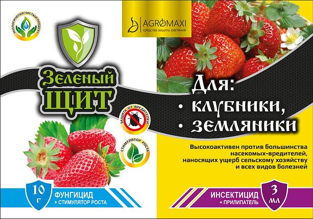 Инсектицид+Фунгицид Для Клубники и Земляники 10г+3мл Зеленый щит, фото 2