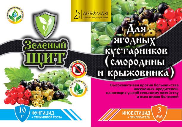 Инсектицид+Фунгицид Для Ягодных кустарников 10г+3мл Зеленый щит, фото 2