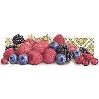Декор Frutti di Bosco Monopole Ceramica 100x300 (037338)